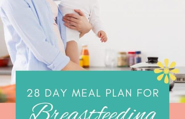 28 Day Breastfeeding Meal Plan for Postpartum Mamas - The ...