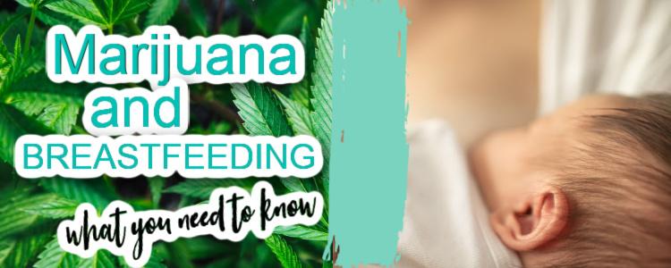 marijuana and breastfeeding